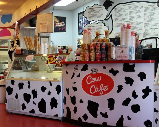 cow-cafe-counter-image